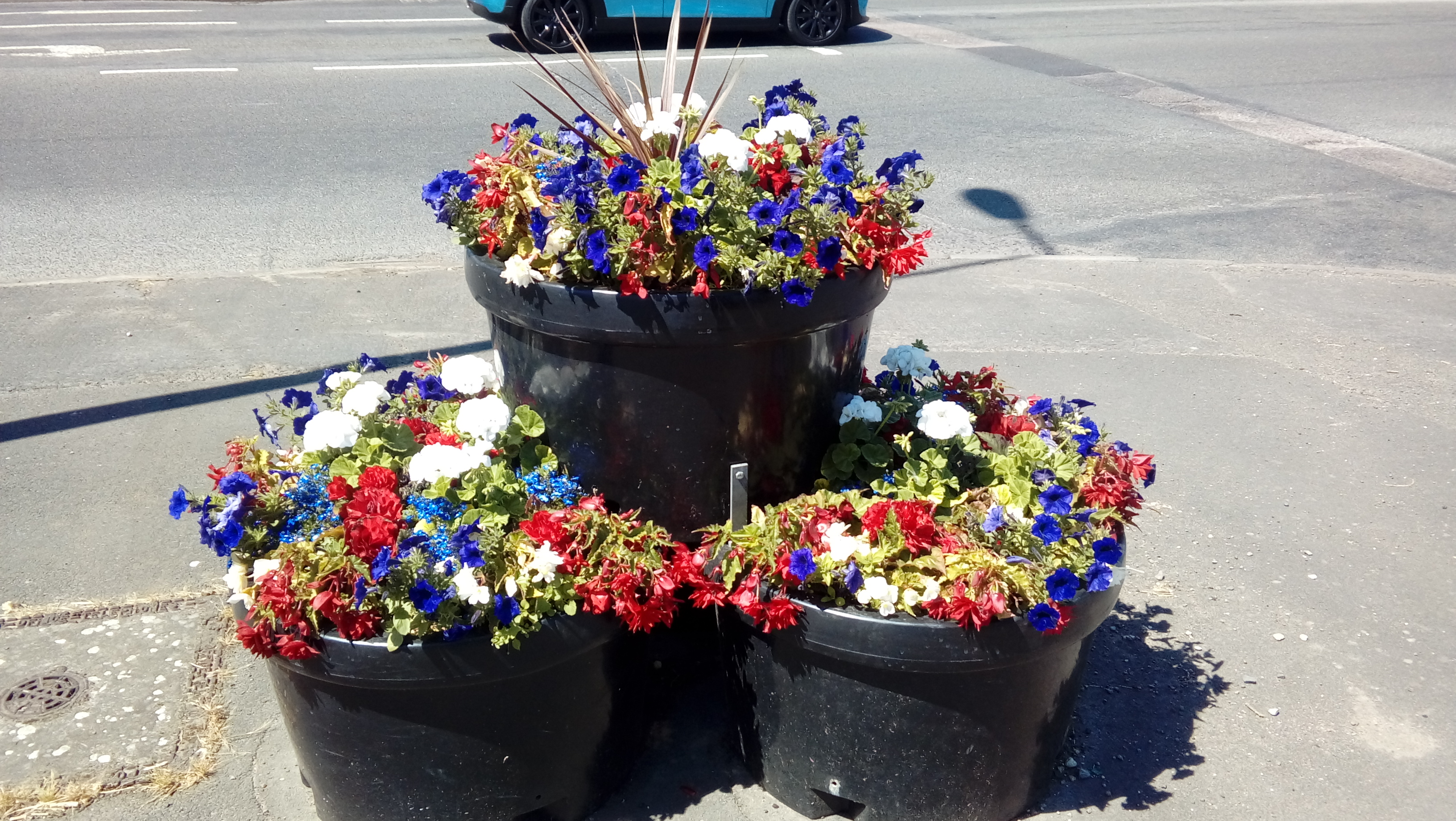 3 baskets of red blue and white flowers