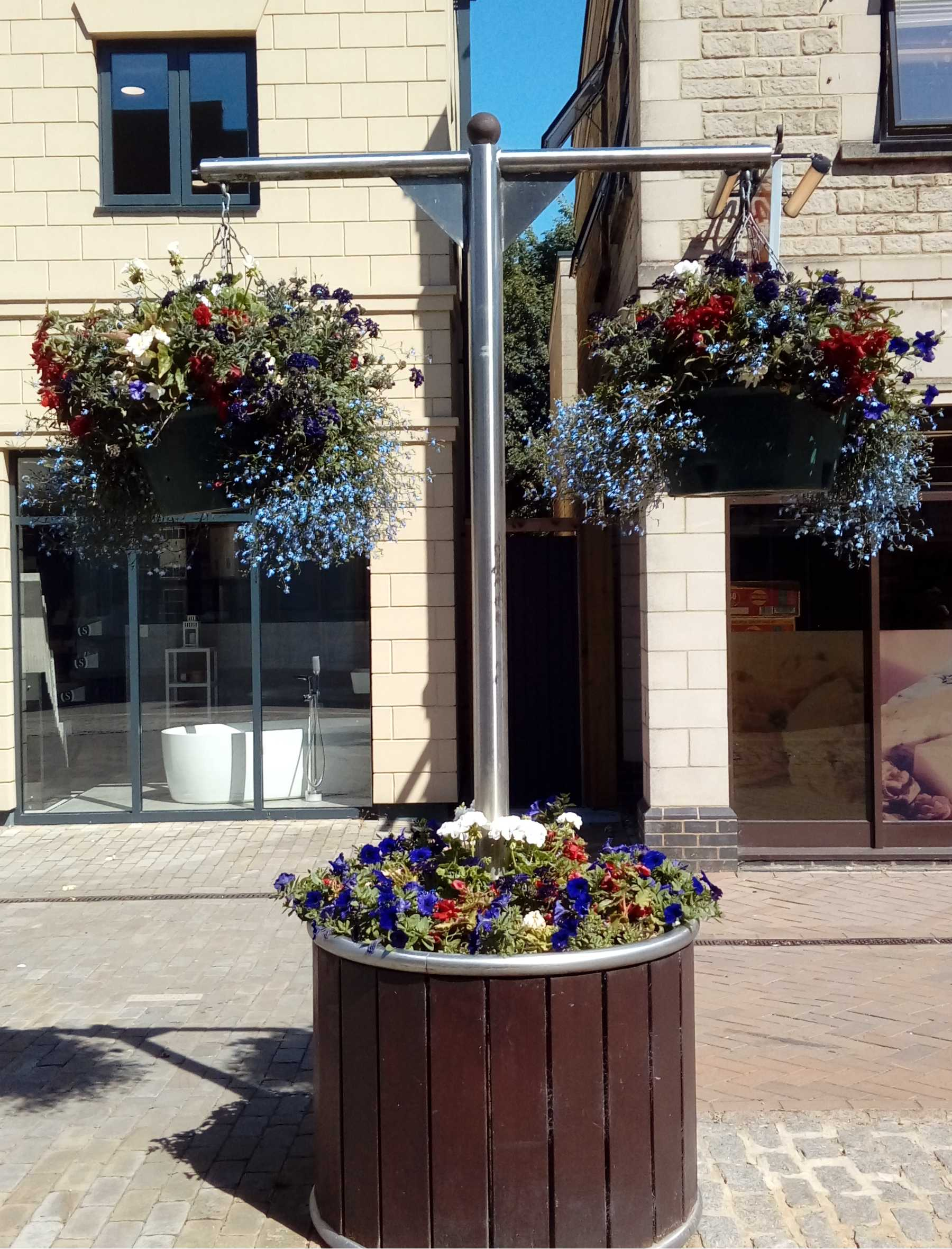 hanging baskets with patriotic flowers
