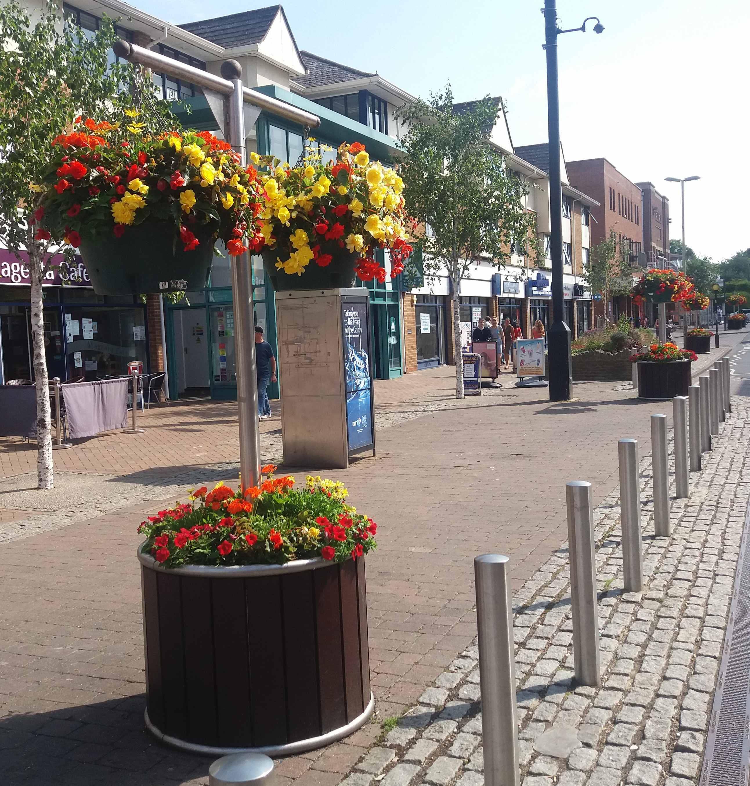 highstreet with yellow and red flowers 2